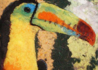 Bird Toucan