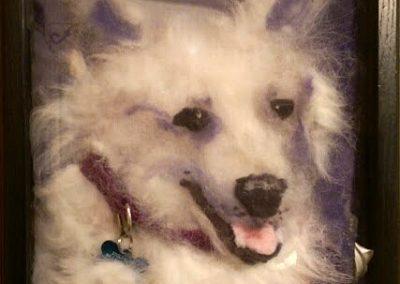 Dog White, Purple Collar