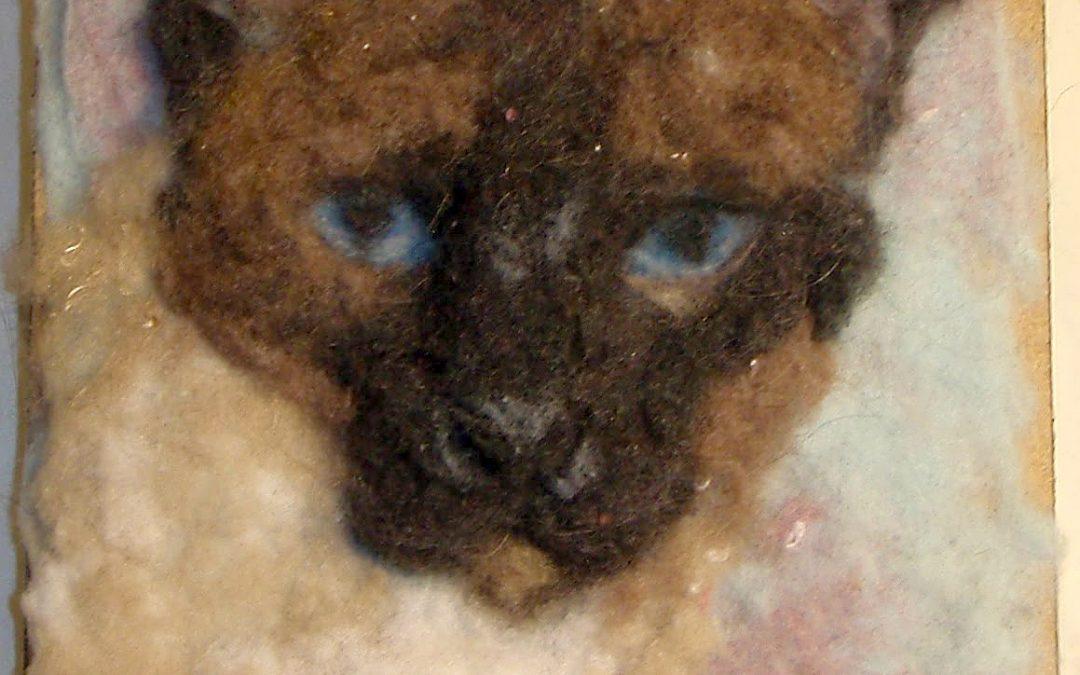 Cat Siamese